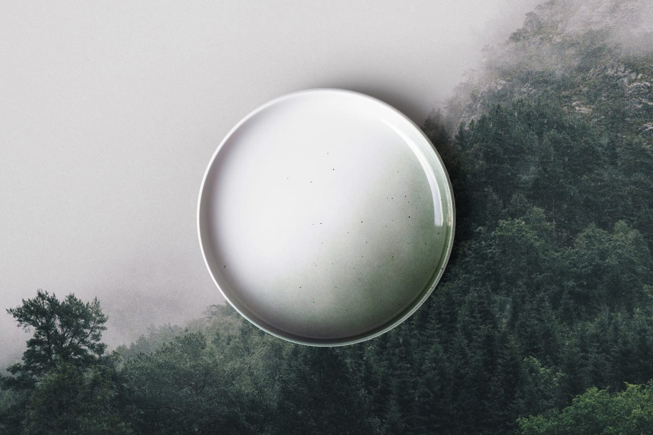 5502HH Green Skygge Forest 1310x873 Passion Talk mit Christian Vassdal/Figgjo